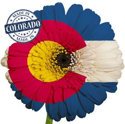colorado real estate brokers